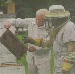 Donnis Ivy, left, shows A.C. Langford some of the bees he is raising near his home in Splendora. Both men are members of the Montgomery County Beekeepers Association.